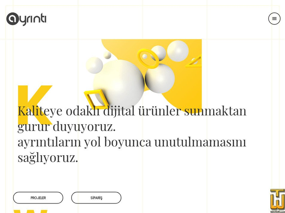 ayrinti.com.tr Screenshot