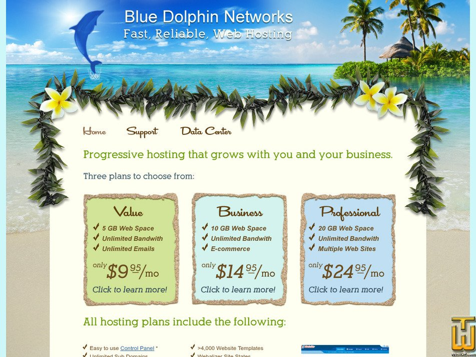bluedolphinnetworks.com Screenshot