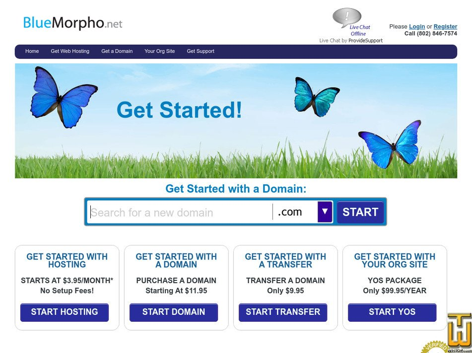 bluemorpho.net Screenshot