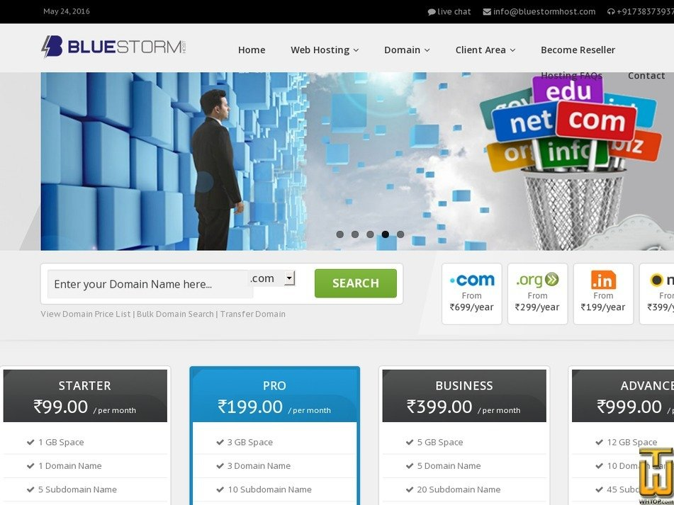 bluestormhost.com Screenshot