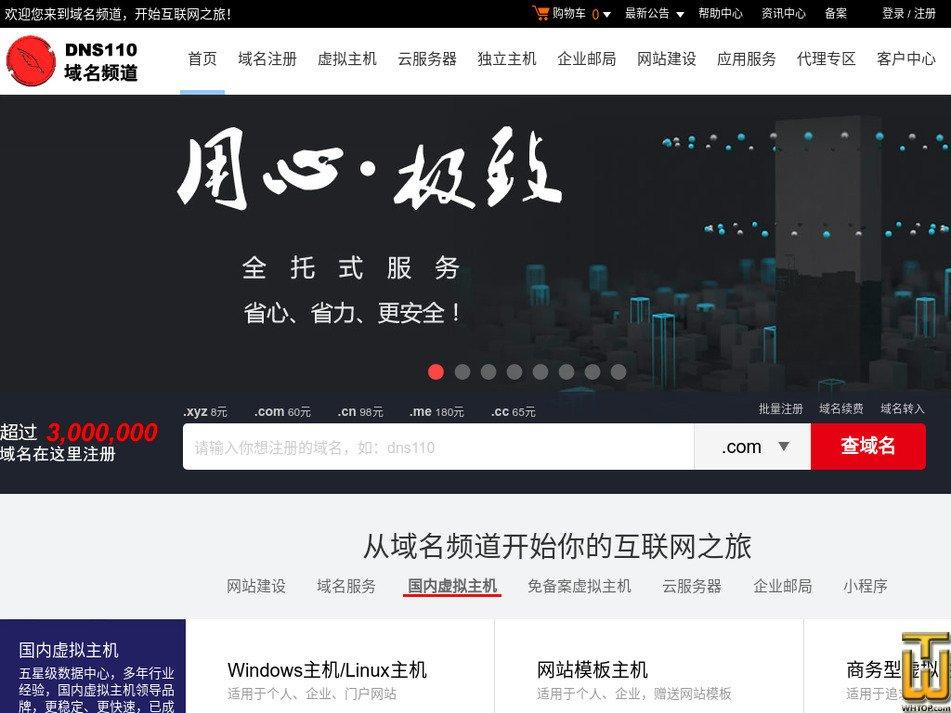 dns110.com Screenshot