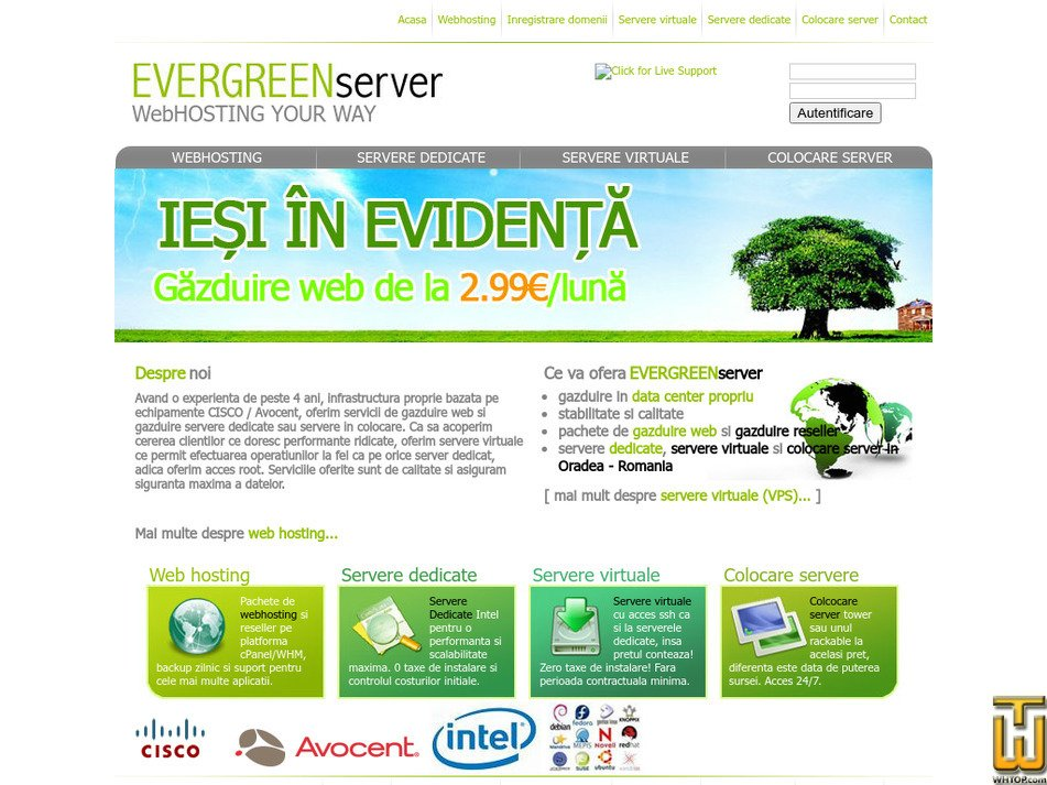 evergreenservers.ro Screenshot