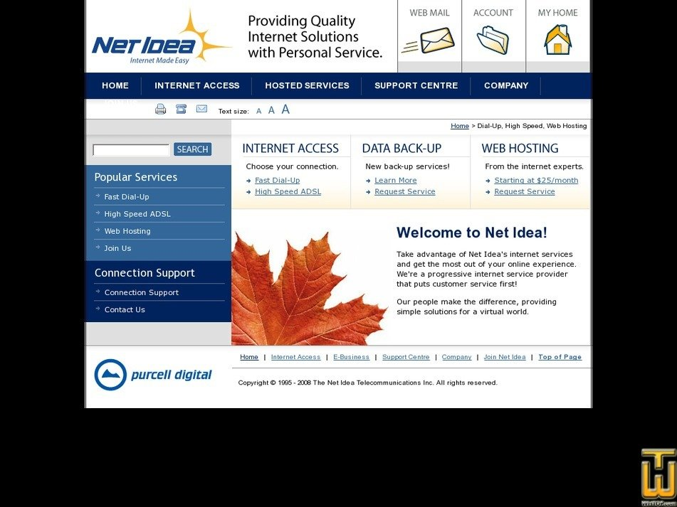 netidea.com Screenshot