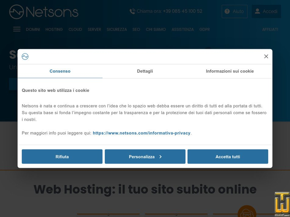 netsons.com Screenshot