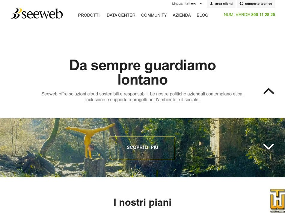 seeweb.it Screenshot