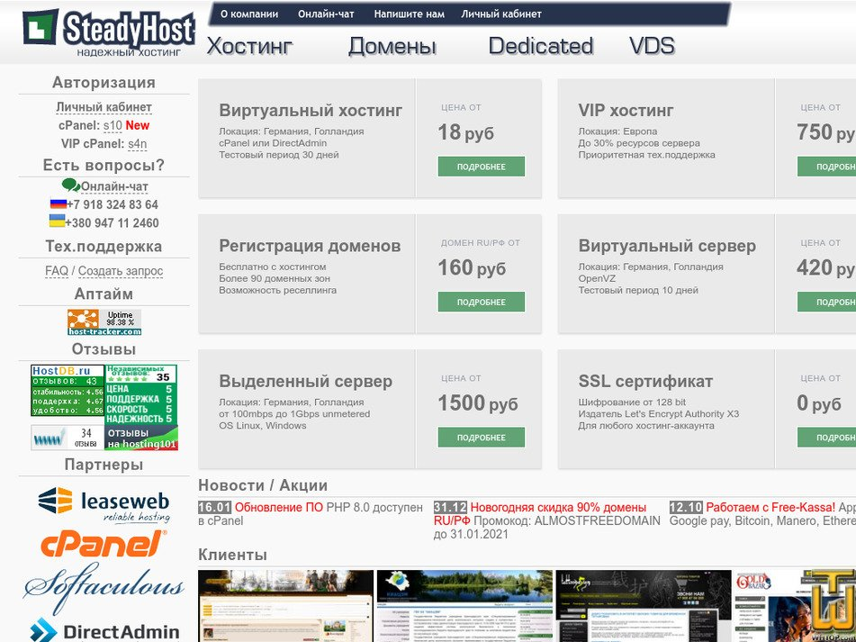 steadyhost.ru Screenshot