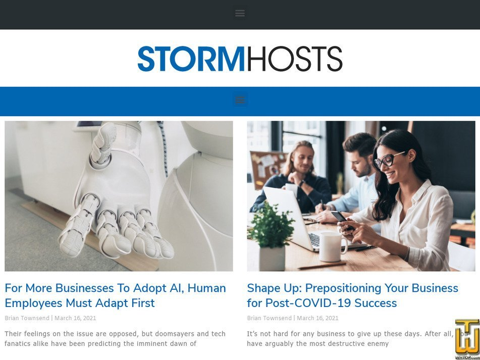 stormhosts.com Screenshot