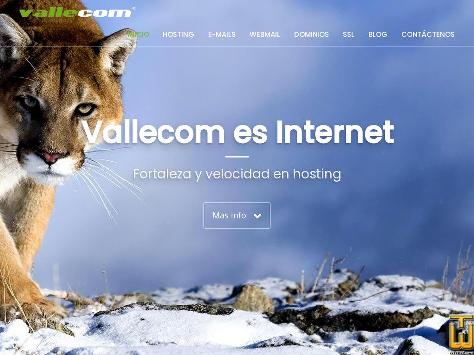 vallecom.net Screenshot