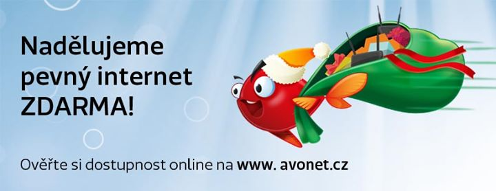 avonet.cz Cover