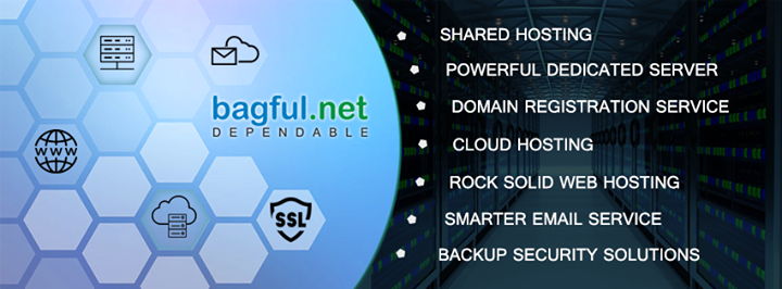 bagful.net Cover