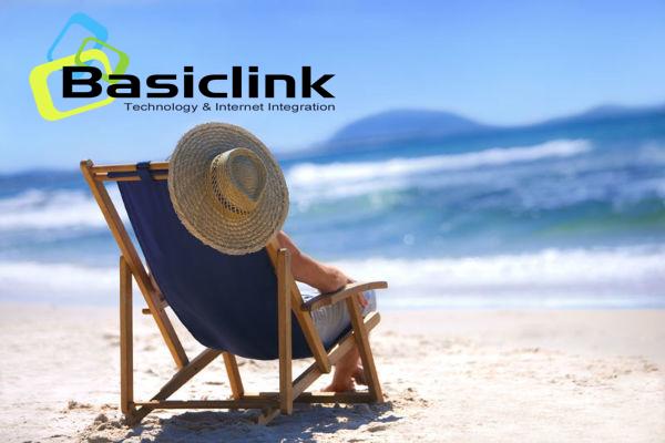 basiclink.com Cover