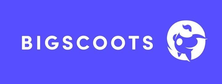 bigscoots.com Cover