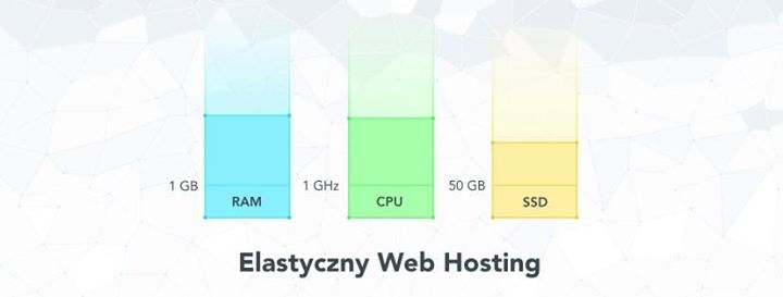 dhosting.pl Cover
