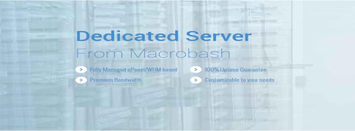 macrobash.com Cover