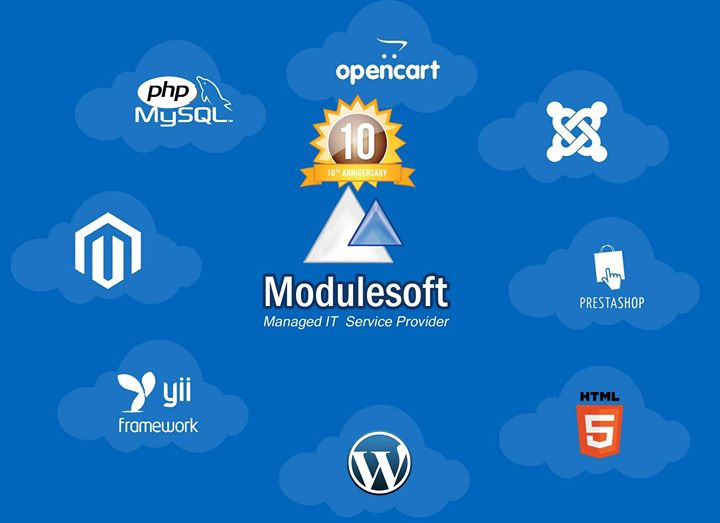 modulesoft.in Cover