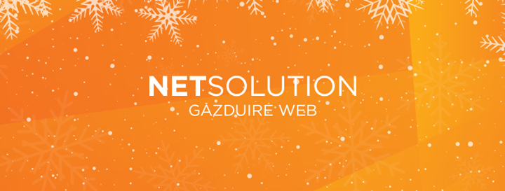 net-solution.ro Cover