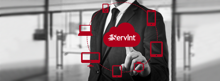 servint.net Cover