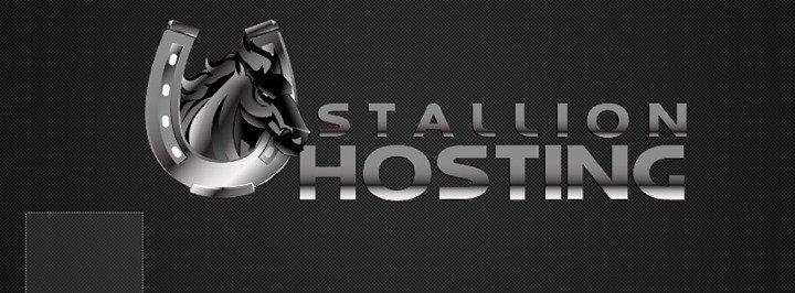 stallionhosting.com Cover