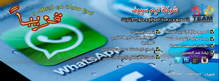 teamserv.com.eg Cover