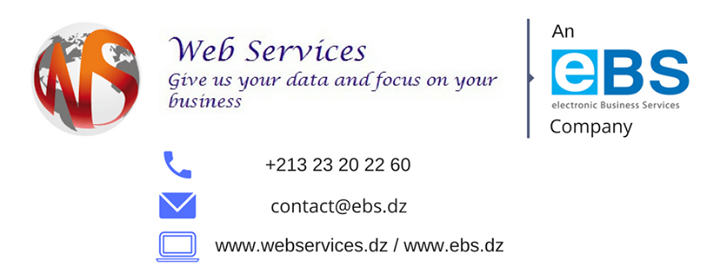 webservices.dz Cover