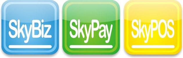 skybiz.com.sg Cover