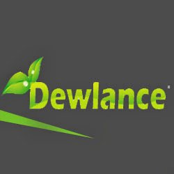 dewlance.com Icon