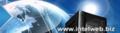 intelweb.biz logo!