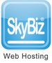 skybiz.com.sg logo!