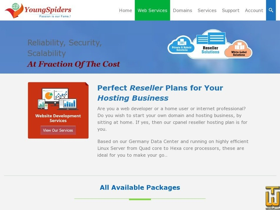 Screenshot of Reseller Hosting I from youngspiders.com