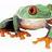 charmingweb.com Icon