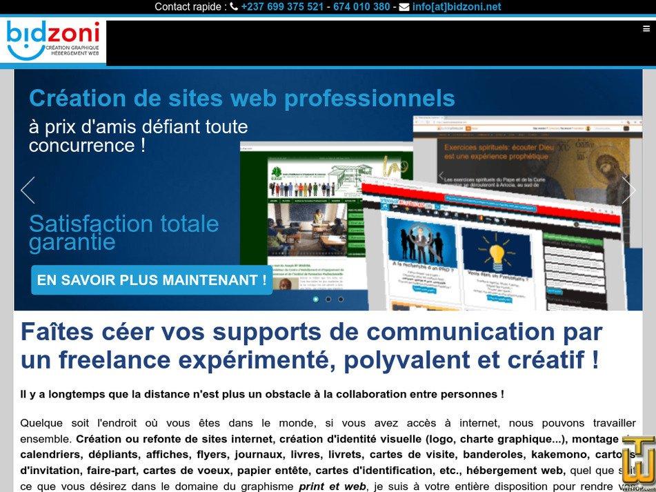 bidzoni.net Screenshot