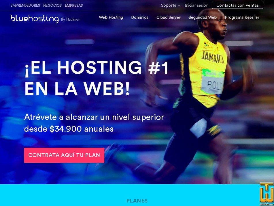 bluehosting.cl Screenshot