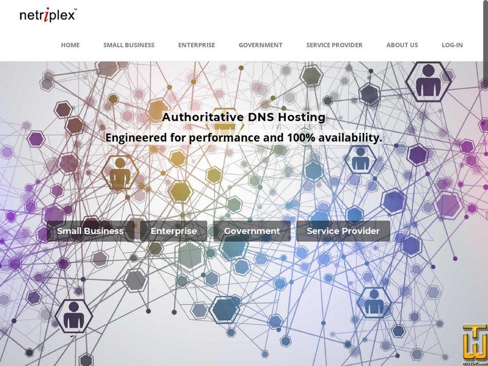 netriplex.com Screenshot