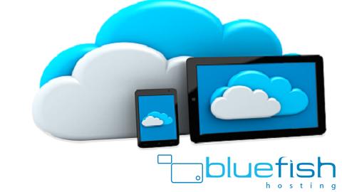 bluefishhosting.com.au Cover