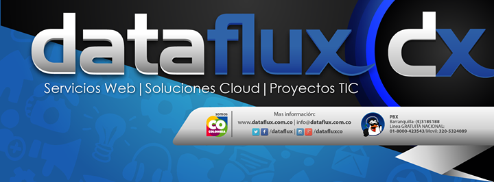 dataflux.com.co Cover