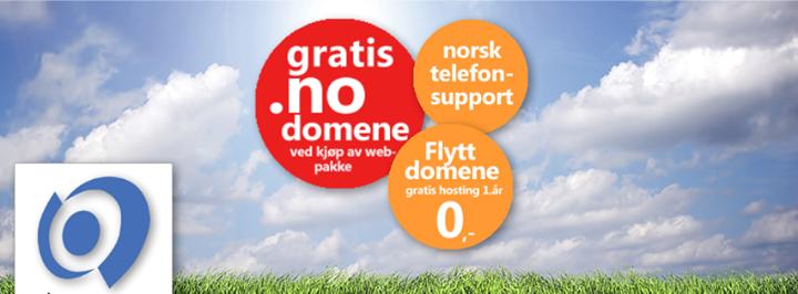 domene.no Cover