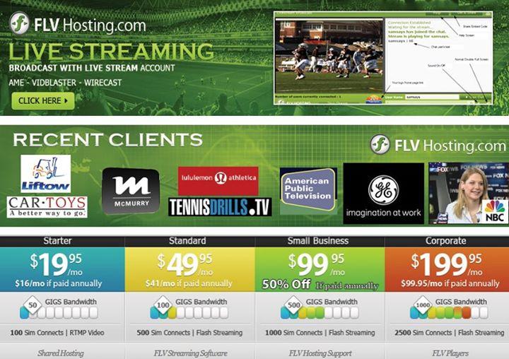 flvhosting.com Cover