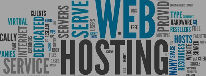 indiawebhosting.com Cover