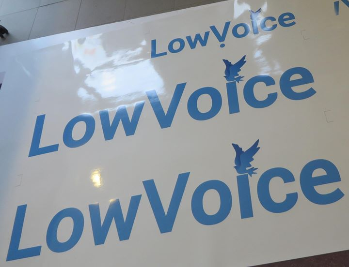 lowvoice.nl Cover