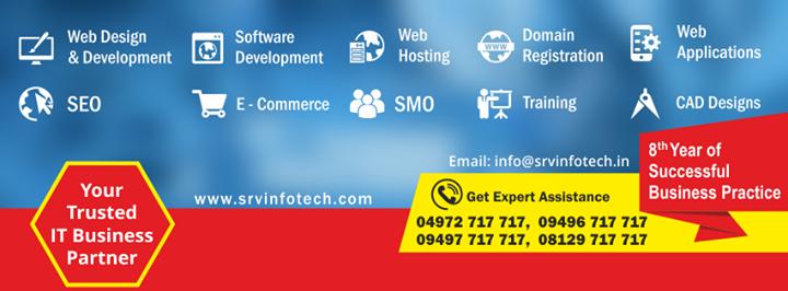 srvinfotech.com Cover