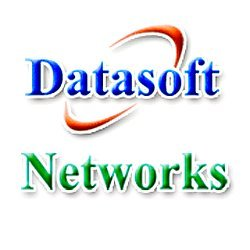 datasoft.ws Icon