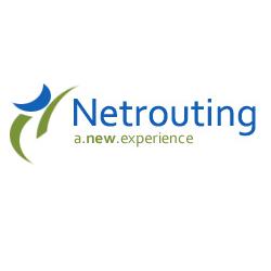 netrouting.com Icon