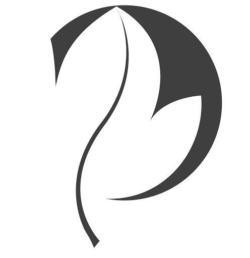viviotech.net Icon