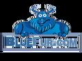 bluefur.com logo!