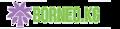borneo.kg logo!