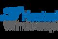 hostedwindows.pl logo!