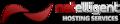 netelligent.ca logo!
