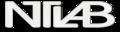 ntlab.it logo!