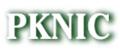 pknic.net.pk logo