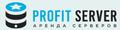 profitserver.ru logo!